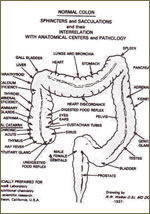 Colon Therapy
